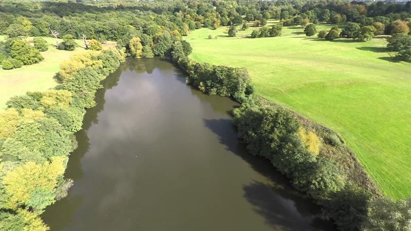 Image of Weald Country Park